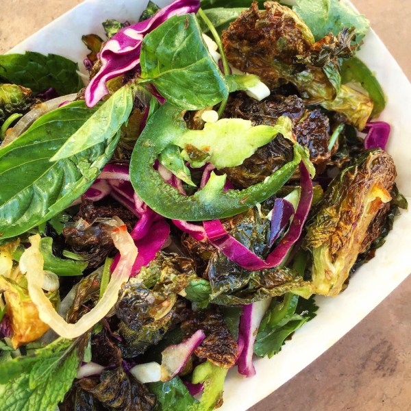 Napa Cabbage and Bok Choy Salad Two of a Kind