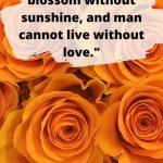 80 Quotes About Sunshine For Motivation Instagram Pinterest