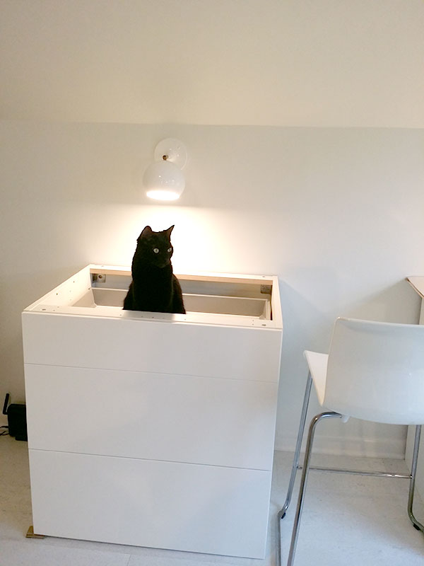 Cat Approved Cabinet Placement for the Craft Studio and Home Office Remodel