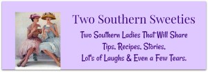 Two Southern Sweeties Logo Banner