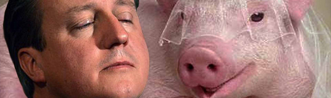 Episode 24 – #Piggate Special