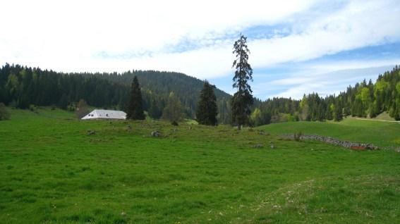 Pré de l'Haut Dessus - Montricher - Vaud - Suisse