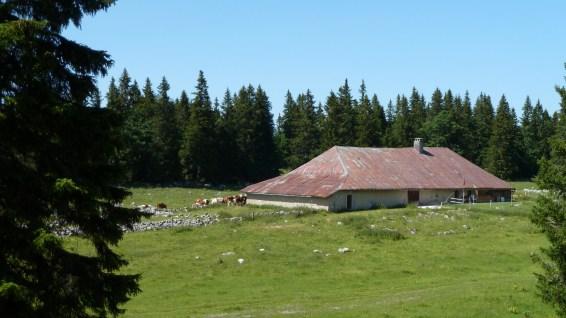Pré d'Etoy - Vaud - Suisse