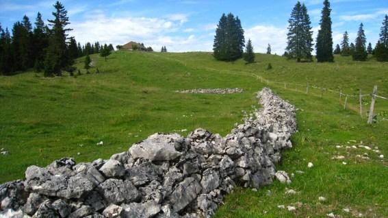 Pré aux Veaux - Le Chenit - Vaud - Suisse