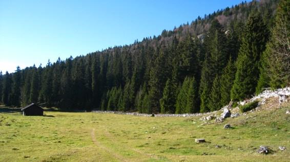 Couvert du Pré de Rolle – Vaud – Suisse