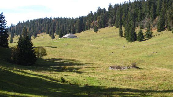 La Petite Chaux – Vaud – Suisse