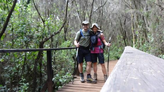 Manara Huts Trail - Mount Kilimanjaro National Park - Tanzania