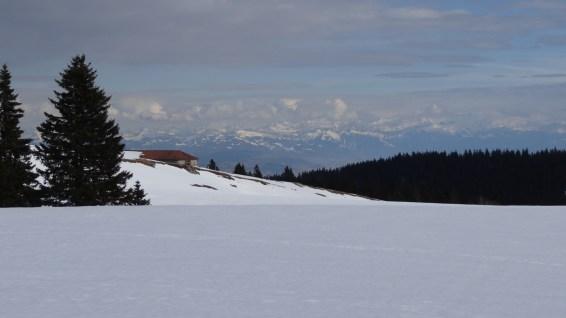 Druchaux - Vaud - Suisse