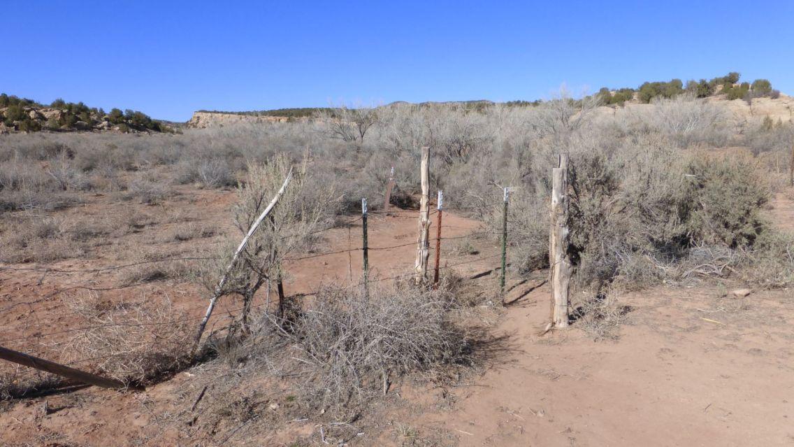 Ballroom Cave Ruins Trailhead - Cedar Mesa - Utah - États-Unis