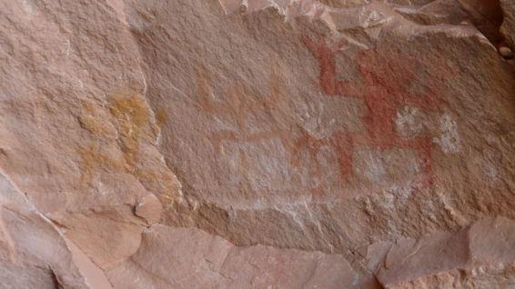 Ballroom Cave Ruins - Cedar Mesa - Utah