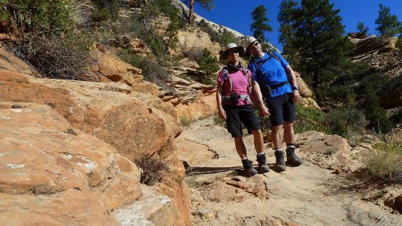 Observation Point Trail - Zion National Park - Utah