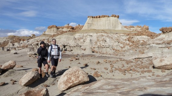 Bisti Wilderness Area - New Mexico