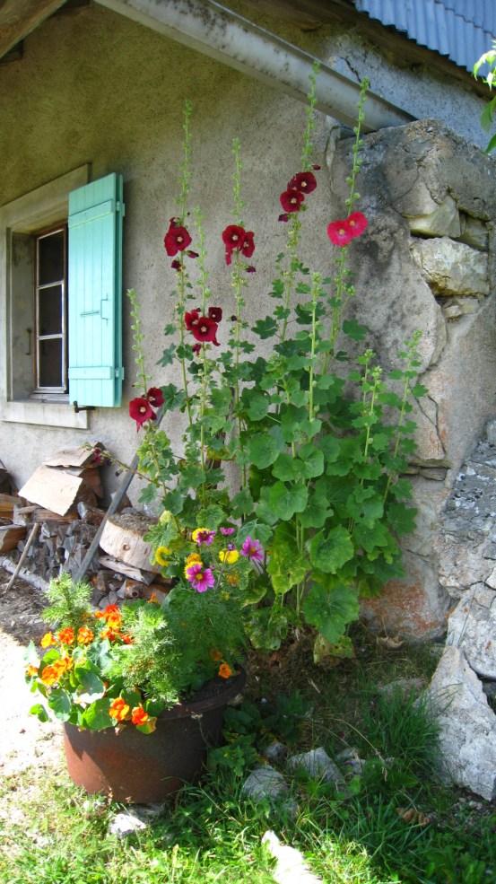 Petites Chaumilles - Le Chenit - Vaud- Suisse