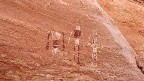 Collins Canyon - Cedar Mesa - Utah