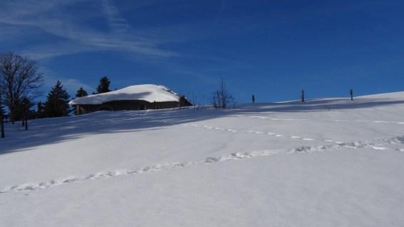 La Pessette - Vaud - Suisse