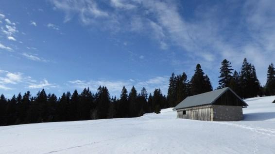 Couvert du Pré aux Biches - Vaud - Suisse