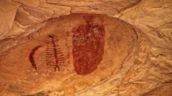 Centipede Panel - Seven Mile Canyon - Moab - Utah