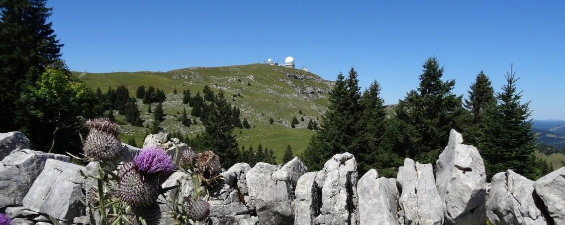La Dôle - Gingins - Vaud - Suisse
