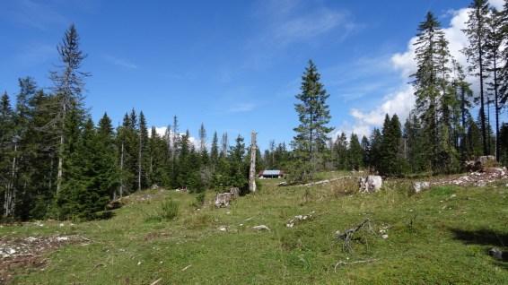 Couvert sur le pâturage de La Baragne - Arzier-Le Muids - Vaud - Suisse