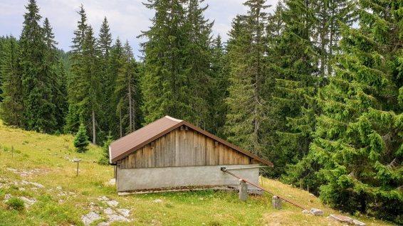 Couvert non loin de la Route du Marchairuz - Le Chenit - Vaud - Suisse
