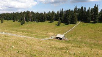 Couvert des Begnines - Arzier-Le Muids - Vaud - Suisse