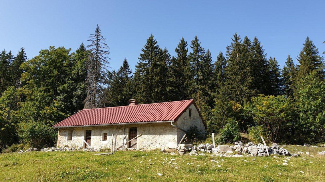 Bois des Loges - Arzier-Le Muids - Vaud - Suisse