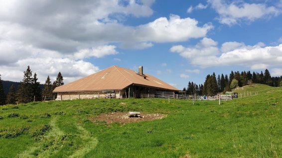 Rionde Dessous - Bassins - Vaud - Suisse