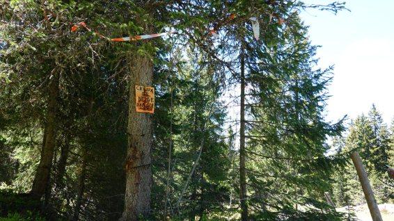 Creux à la Neige - Arzier-Le Muids - Vaud - Suisse
