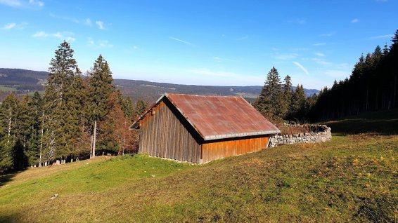 Couvert à Timothée - L'Abbaye - Vaud - Suisse