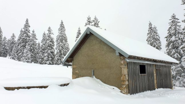 Couvert du Pré aux Biches - Bière - Vaud - Suisse