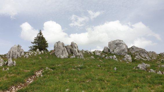 Pointe de Fin Château - Gingins - Vaud - Suisse