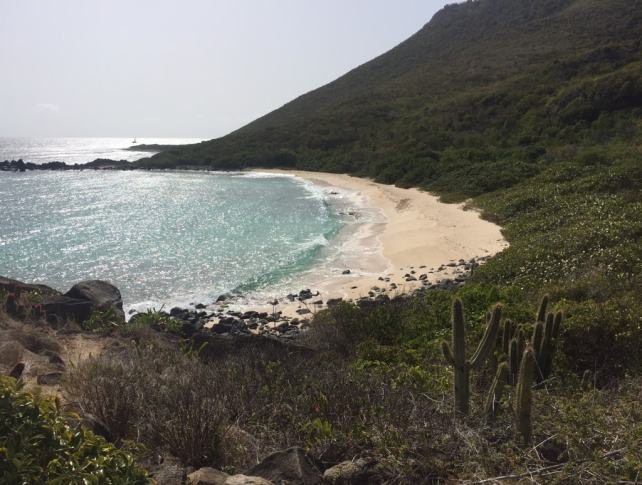 View of the beach from the trail