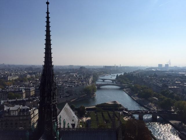 "A great view of the Seine and it's beautiful bridges. - ""Morning with Gargoyles at Notre Dame de Paris"" - Two Traveling Texans"