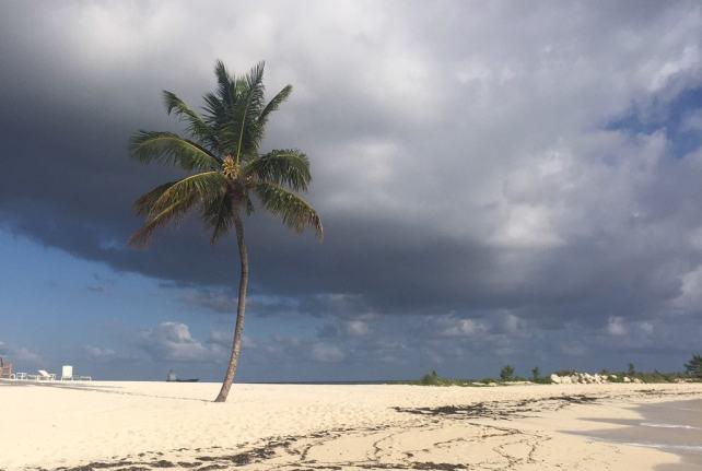 A peaceful beach in the Bahamas