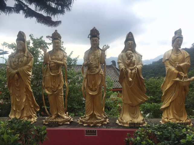 """Buddhas with a view! - """"The Truth about the 10000 Buddhas Monastery"""" - Two Traveling Texans"""