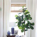 Budget Friendly Living Room Window Treatments