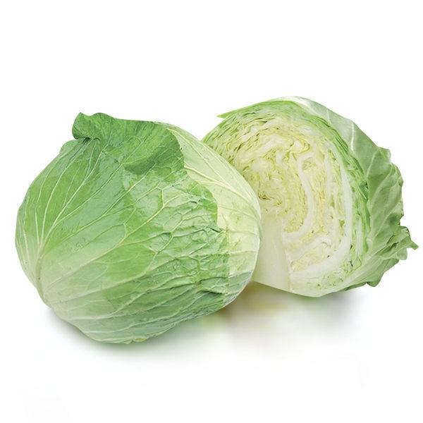 庶民蔬菜~高麗菜怎麼煮?