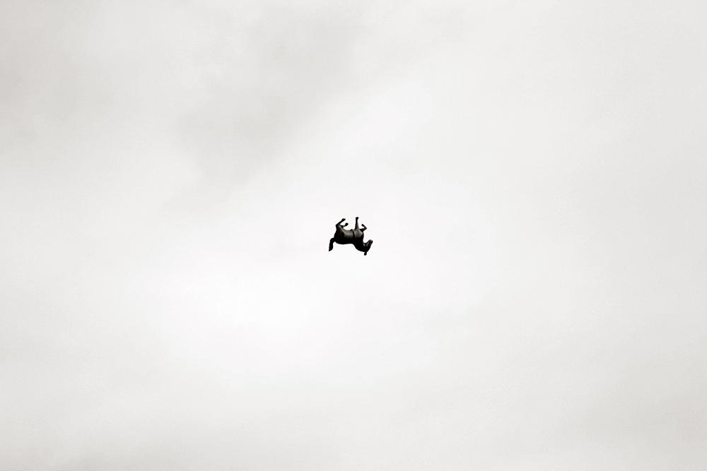 Me gustó ver un burro volando.