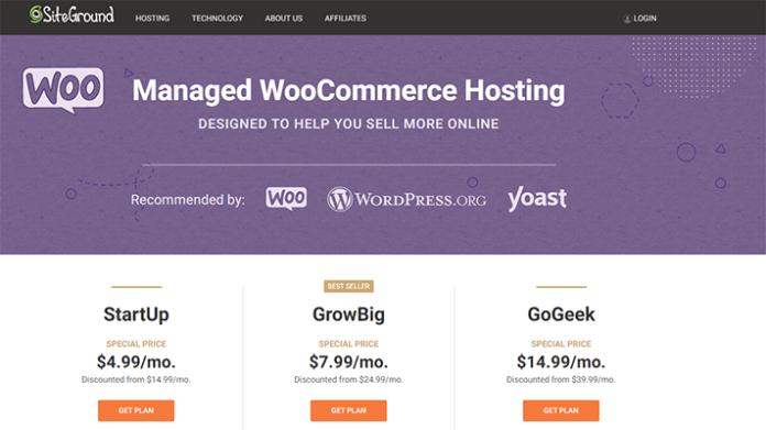 SiteGround hosting company
