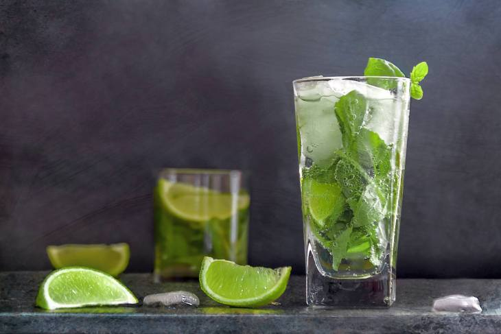 Classic Mint Mojito Recipe | A Real Smoothie | Alkaline Water Breakfast Mojito, Anyone?