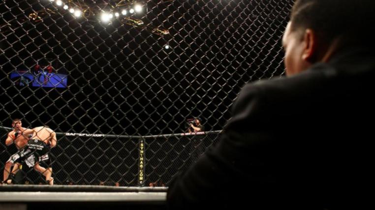 just-in-time-for-back-to-the-future-day-hermetically-sealed-mma-judges-1445448831.jpeg