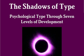 Cropped cover of book called 'The Shadows of Type'