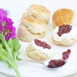 8 tips to make the perfect scones and my go to recipe
