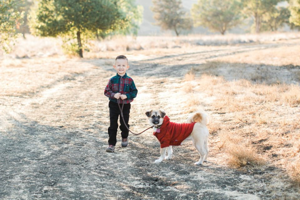little boy walks his dog during family photos at Santa Teresa Park