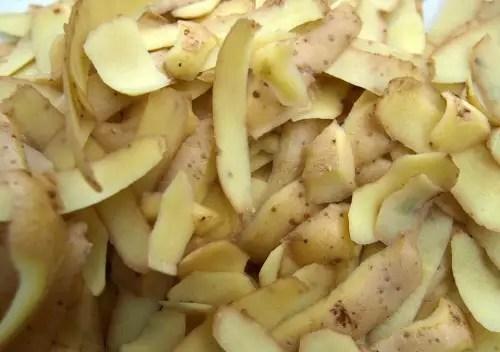 Green Potato Skins