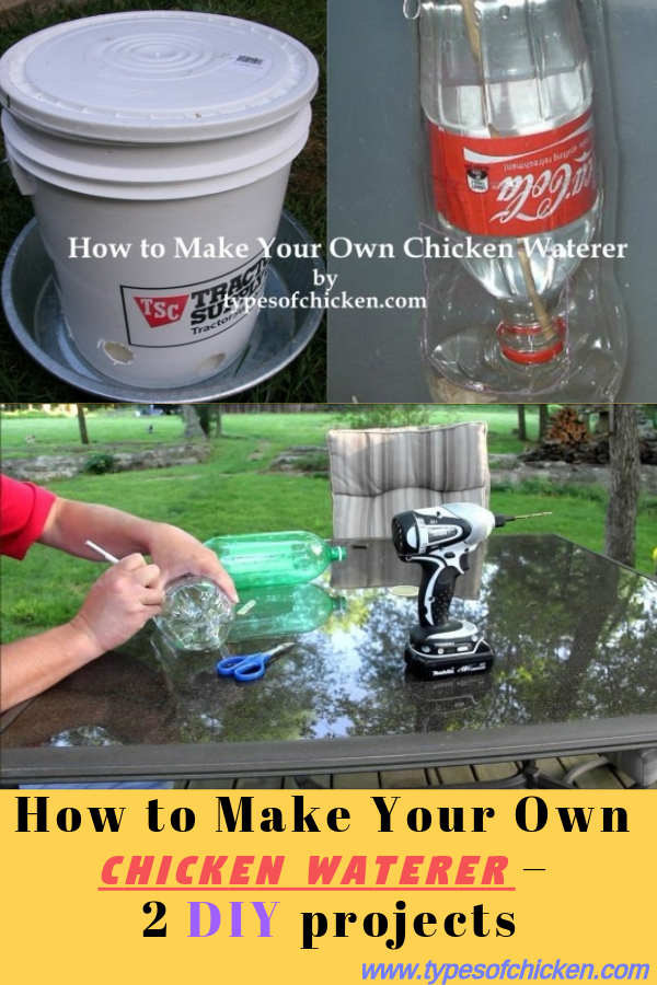 How To Make Your Own Chicken Waterer 2 Diy Projects Types Of