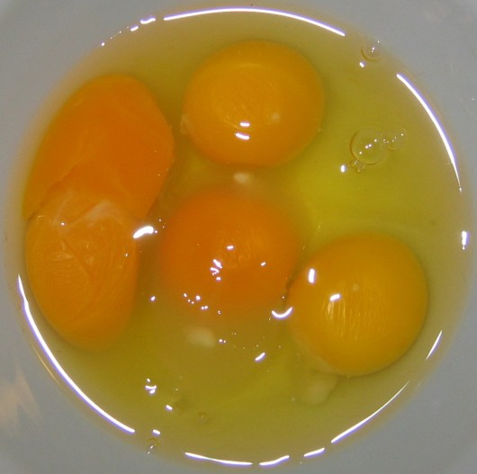 Fertile and infertile eggs