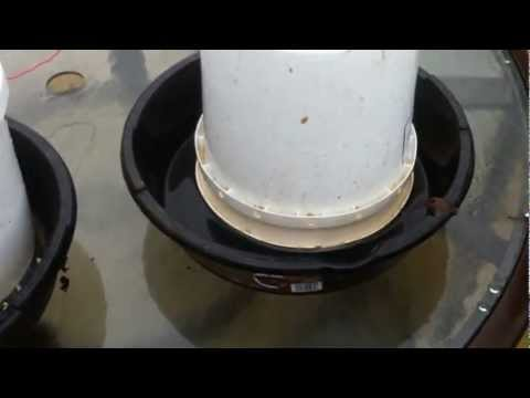 Homemade 5 Gallon Bucket Waterer For Chickens