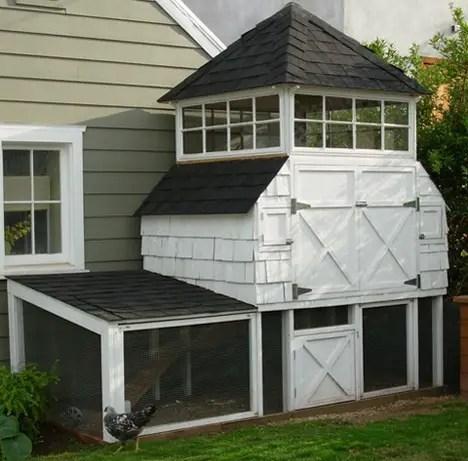 urban-chicken-coop-11