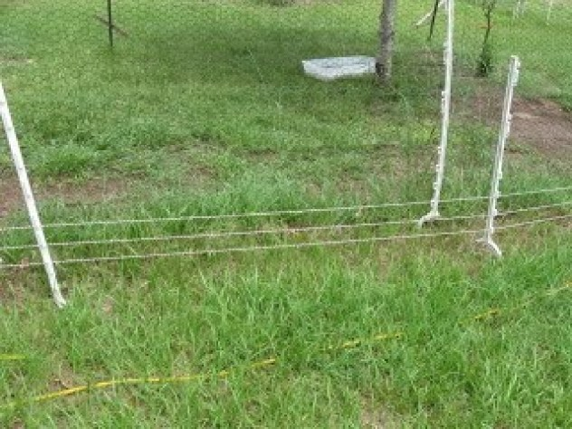 Safe Electric Chicken Fence